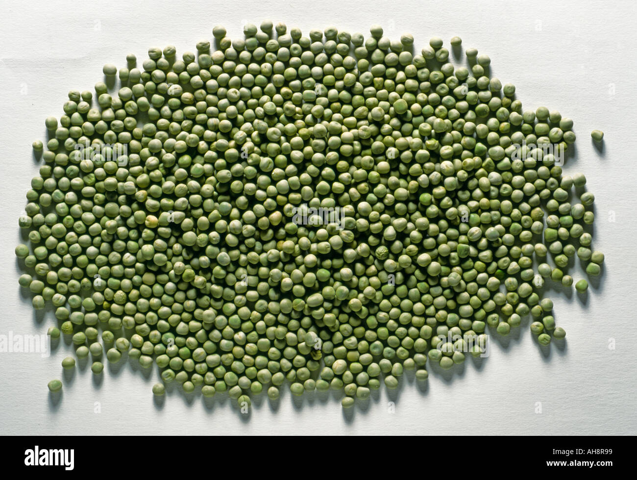 AAD71623 Food vegetable healthy nutricious dried green peas pisum sativum on white background doublespread studioshot - Stock Image