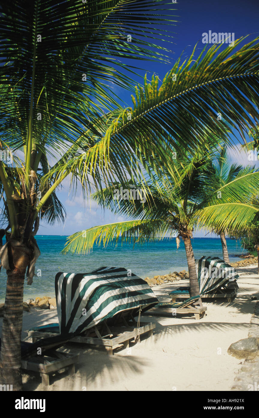 Lounge chairs along beach at Bitter End Yacht Club on Virgin Gorda in the British Virgin Islands - Stock Image