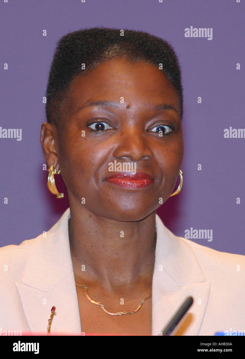 Baroness Amos Labour Peer Portrait Labour Party Conference Bournemouth 2003 Stock Photo