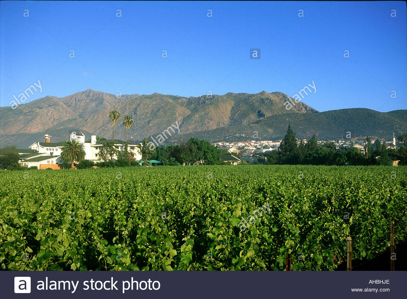 South Africa Montagu - Stock Image