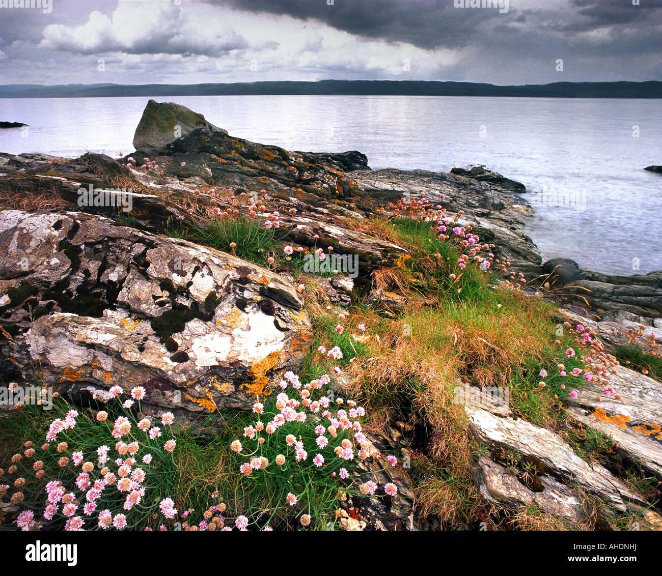 GB - SCOTLAND:  Imachar Point on Arran Island - Stock Image