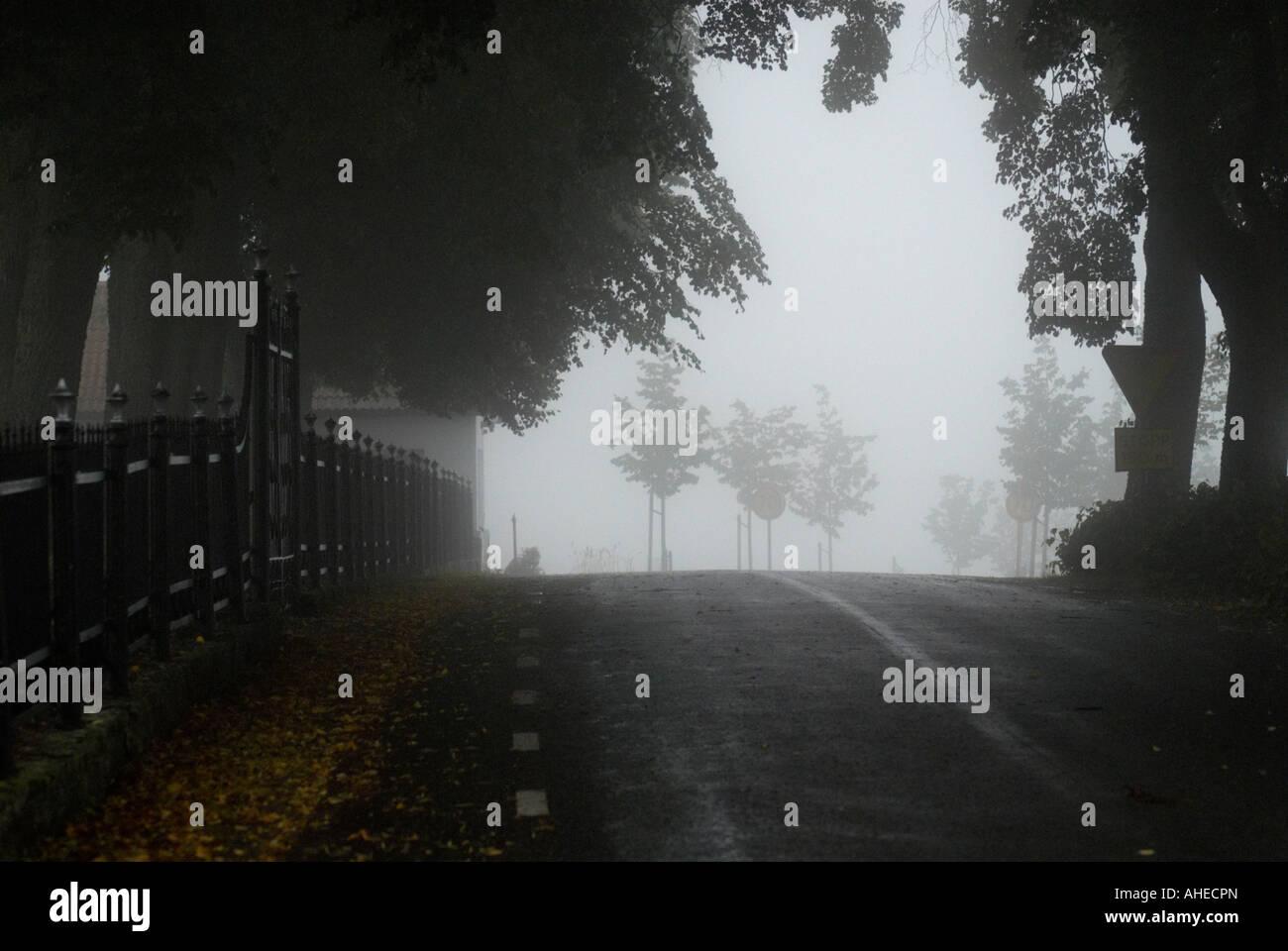 Misty road Stock Photo