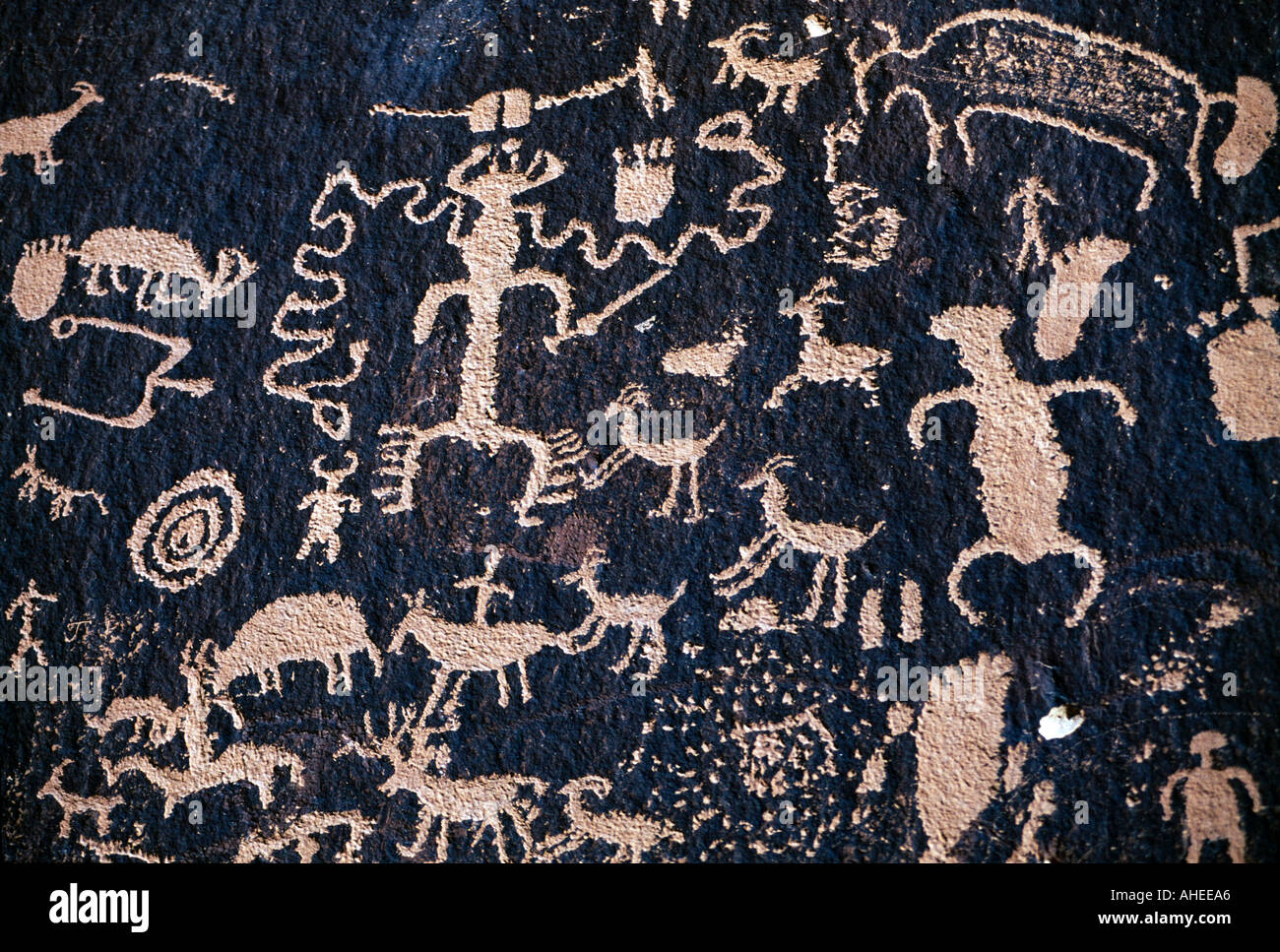 United States of America, Utah, Canyonlands National Park, Anasazi Indian Rock Petroglyphs, Newspaper Rock - Stock Image