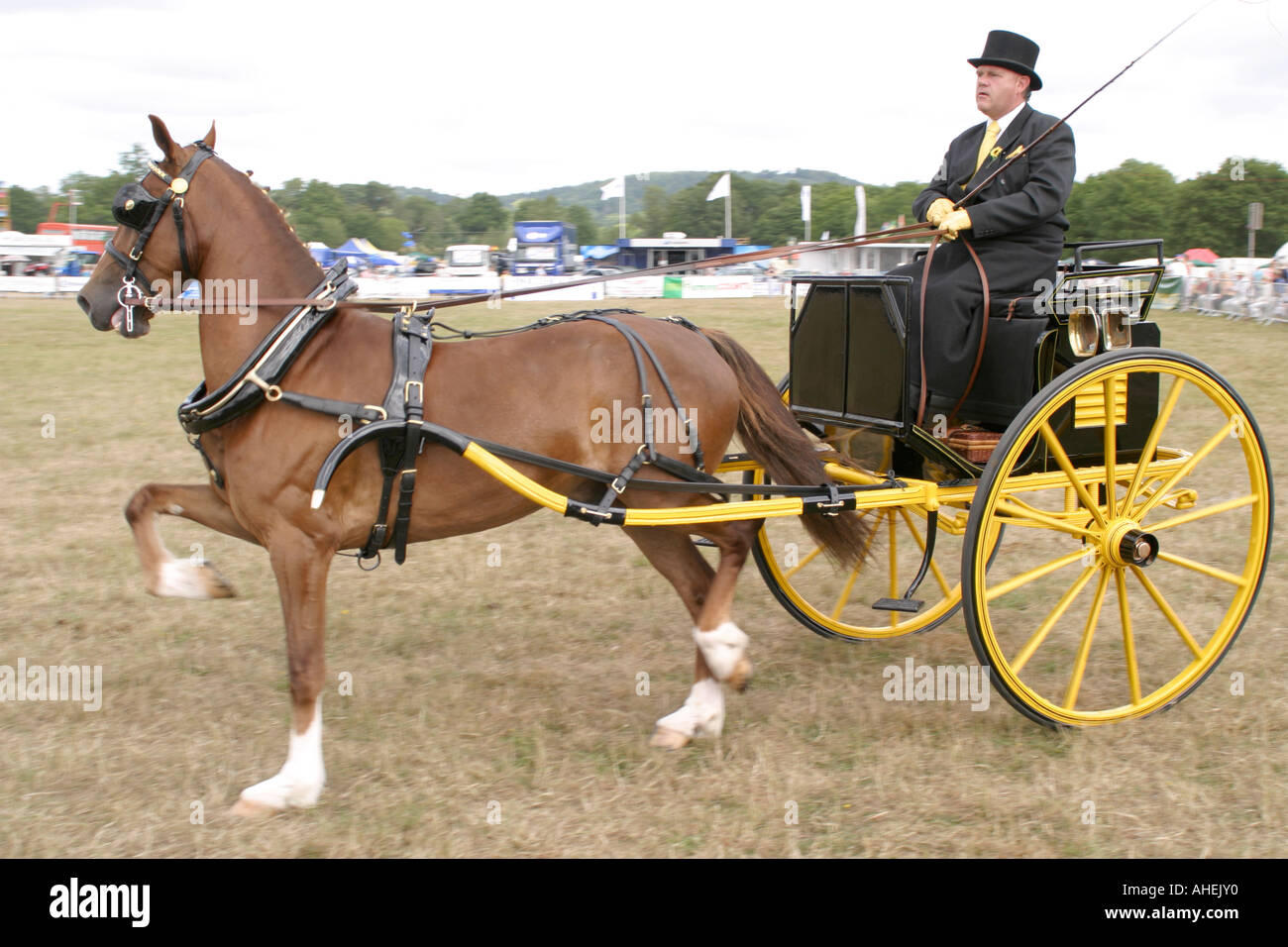 The Cranleigh Show August 2006 - Stock Image