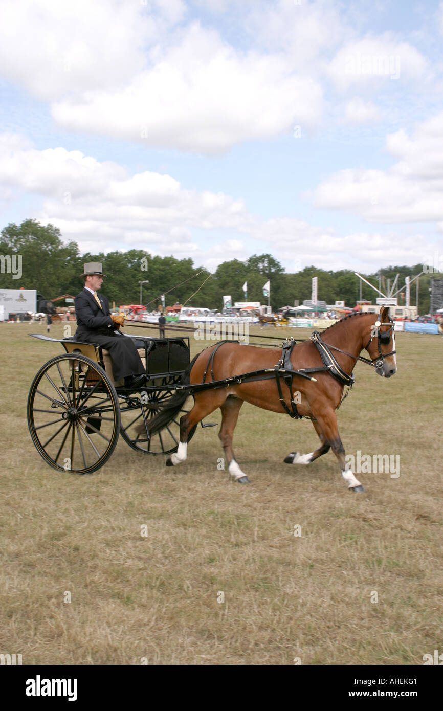 The Cranleigh Show UK August 2006 - Stock Image