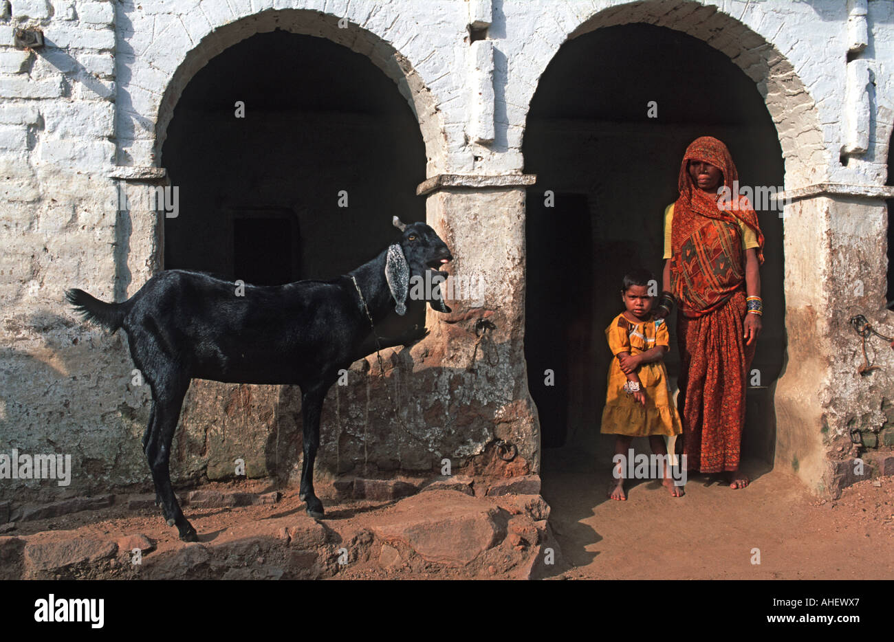 Mother and daughter outside their family home in old Khajuraho town A goat stands alongside Madhya Pradesh India - Stock Image