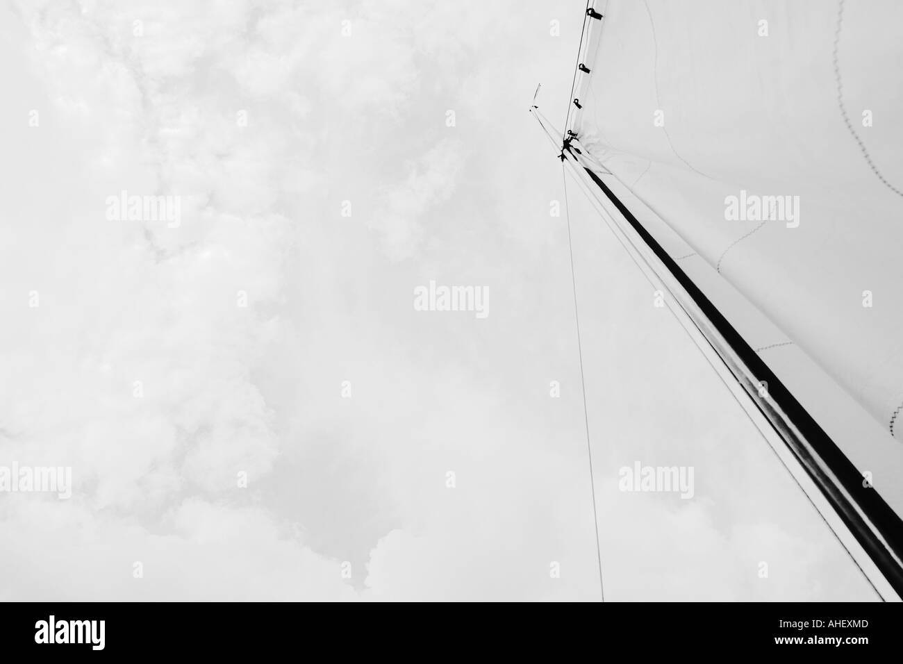 Sail And Sky From Below - Stock Image