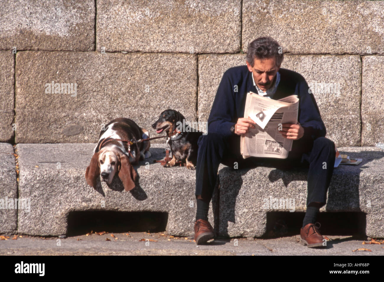 Man sitting reading newspaper with two dogs. El Escorial, Spain. - Stock Image