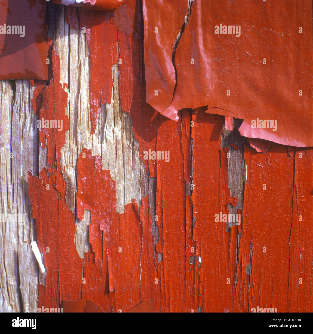 Peeling Paint Texture - Stock Image