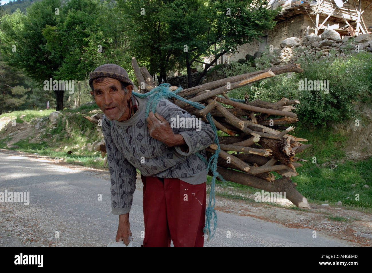 Man carrying heavy load of sticks he has collected for winter fuel. - Stock Image
