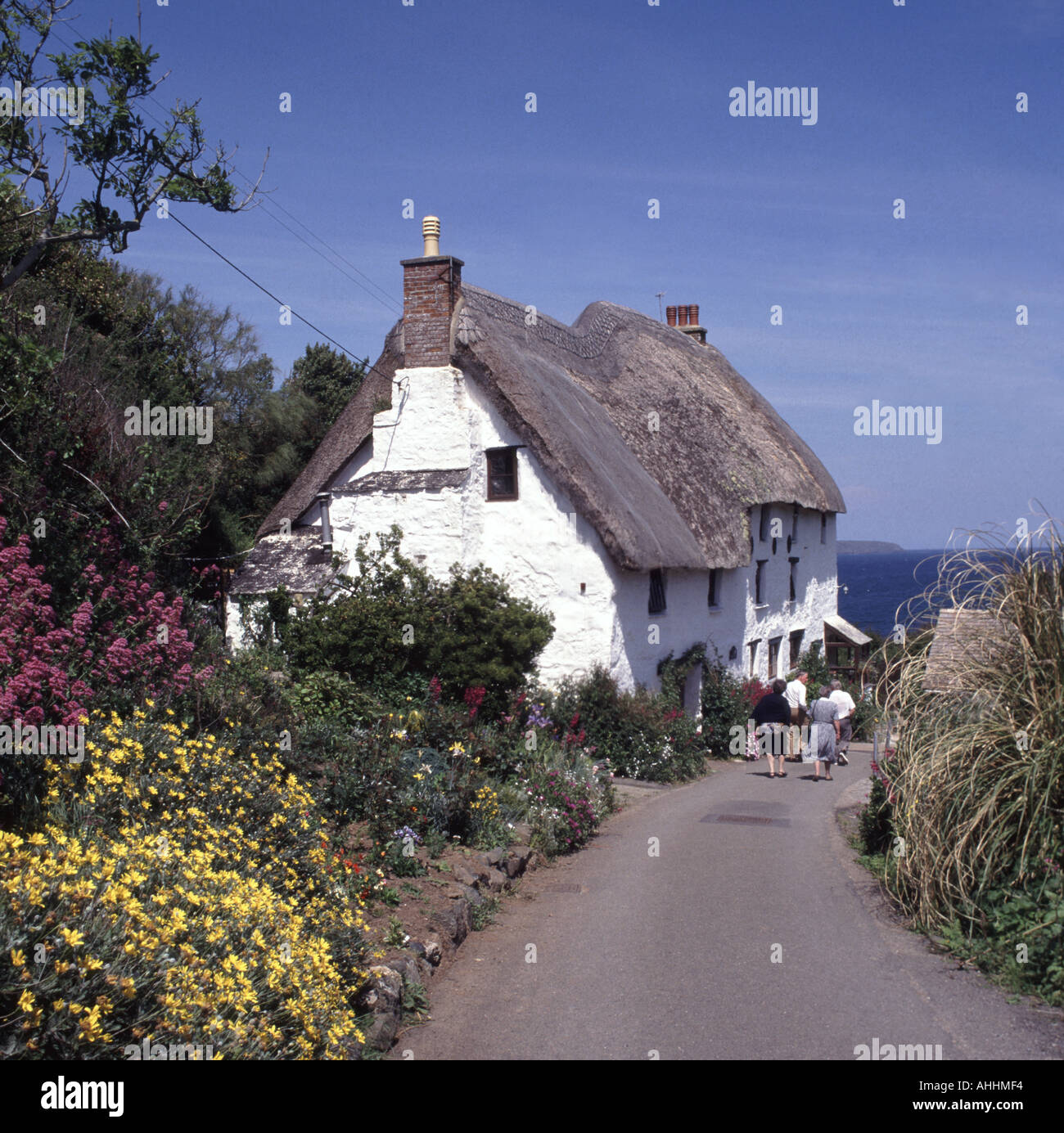 Church Cove near Mullion small coastal hamlet country lane with thatched roofed cottage distant and walkers Stock Photo