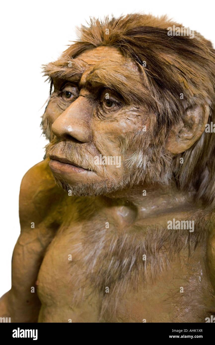 Model of Neanderthal man Soos Bohemia Czech Republic - Stock Image