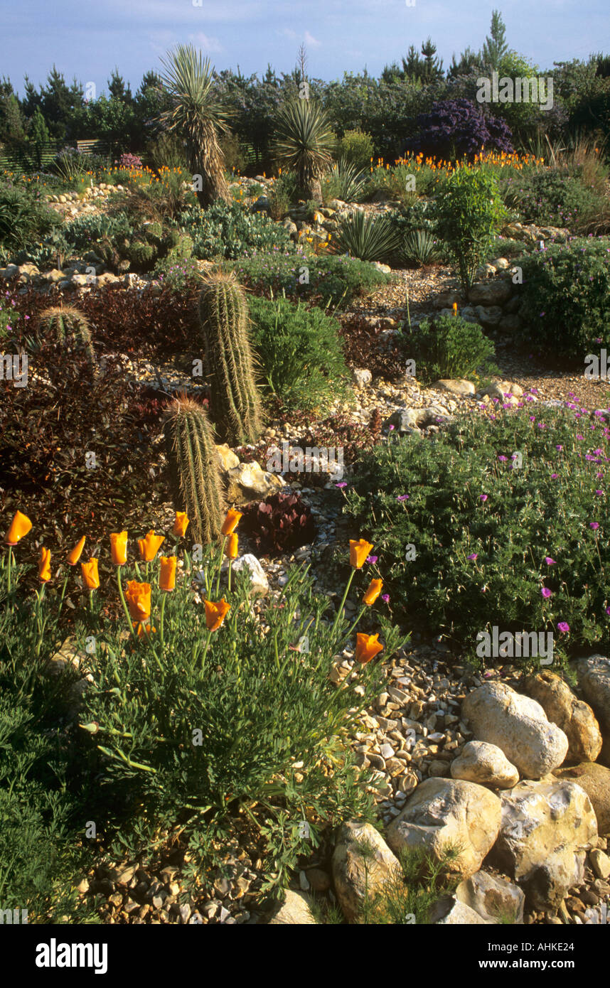 DESERT WASH GARDEN AT EAST RUSTON OLD VICARAGE IN NORFOLK, UK, IN ...