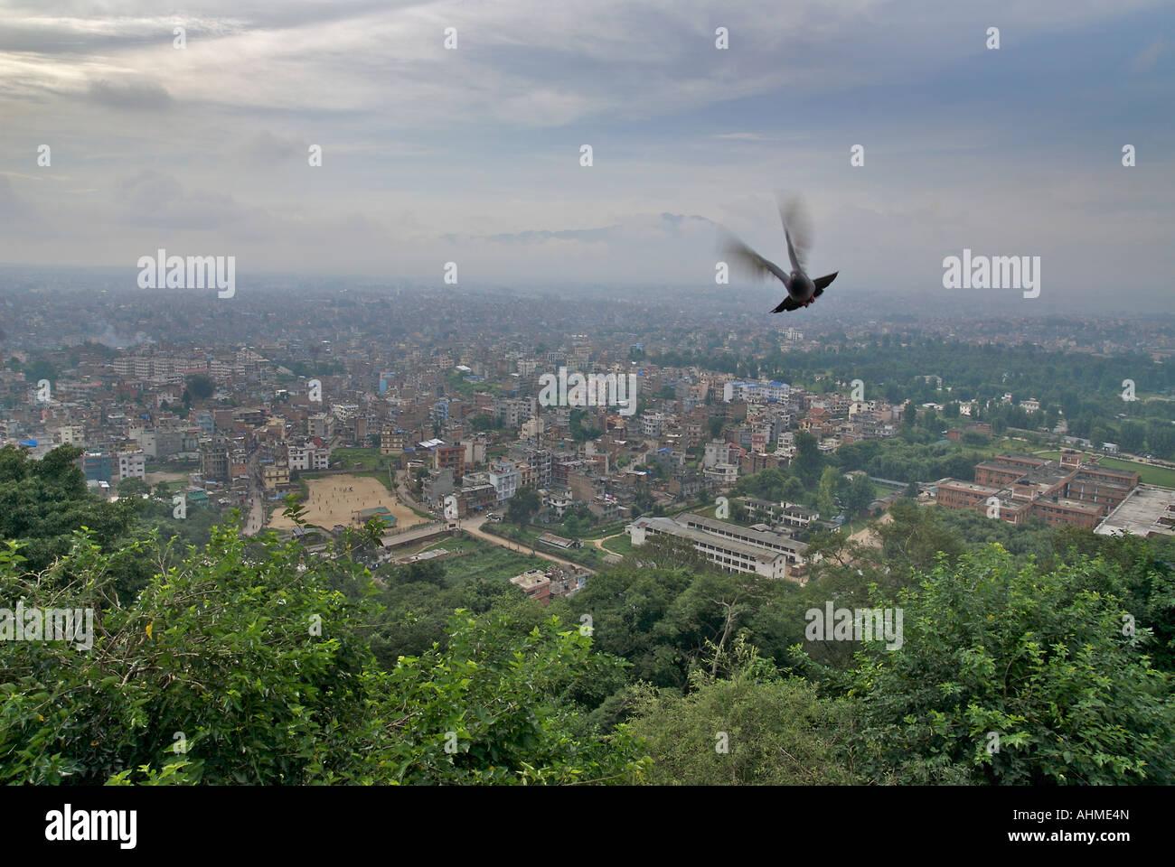 View of Kathmandhu from the temple at Swayambhunath Kathmandu Nepal Flying Pigeon - Stock Image