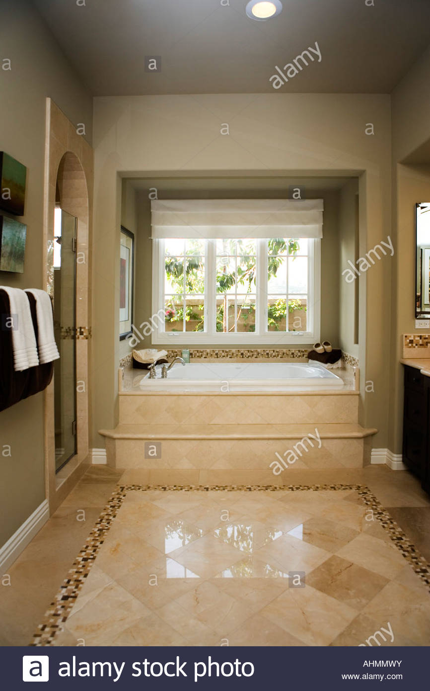 Steps Leading to Jacuzzi Tub in Master Bathroom Stock Photo ...
