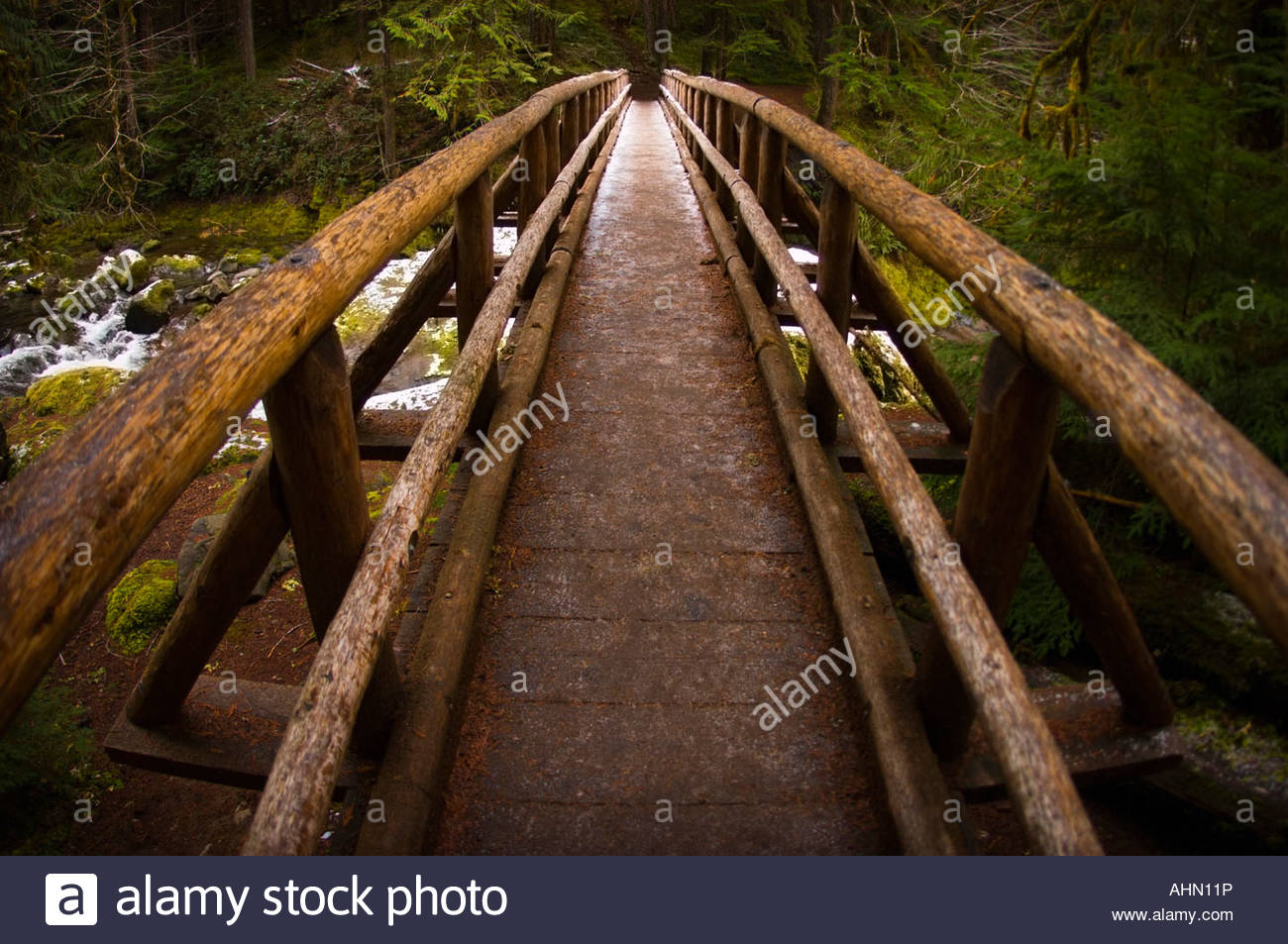 Bridge spanning forest river - Stock Image