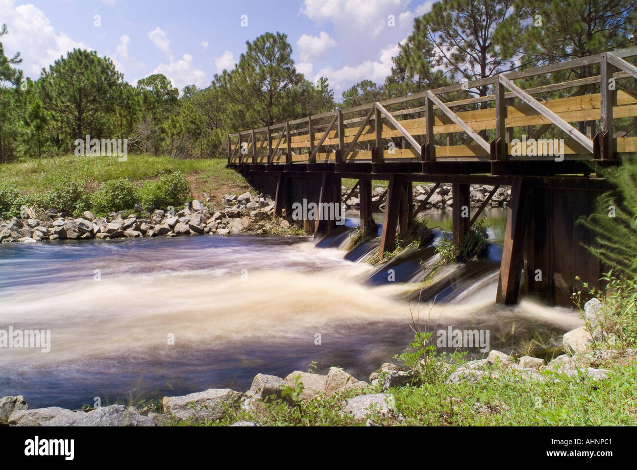 florida lake kissimmee state park rosalie drain waterway between rh alamy com lake kissimmee state park wedding lake kissimmee state park reviews