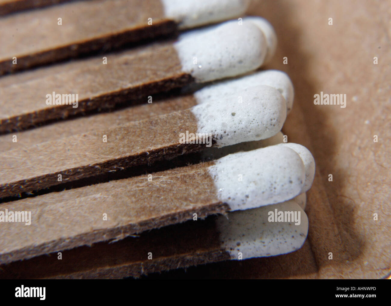 Closeup of matches in matchbook - Stock Image