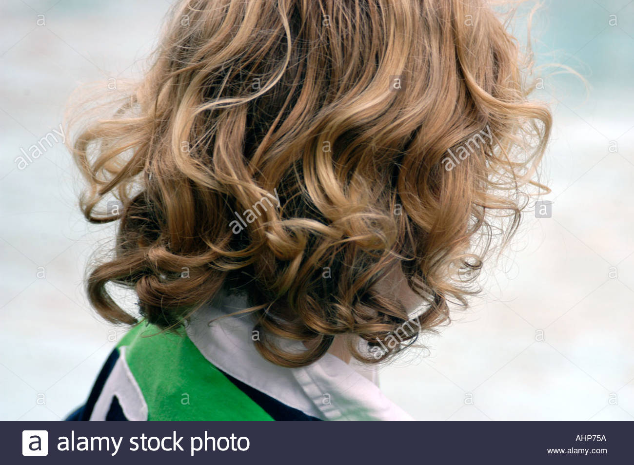 Back Of Small Boy S Head With Blonde Curly Hair Uk Stock Photo