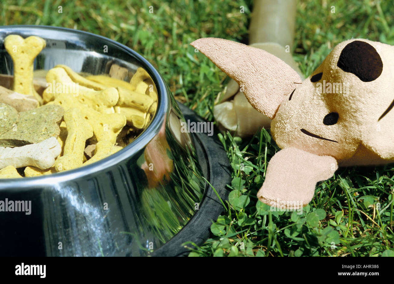 Dog biscuits chew and toy - Stock Image