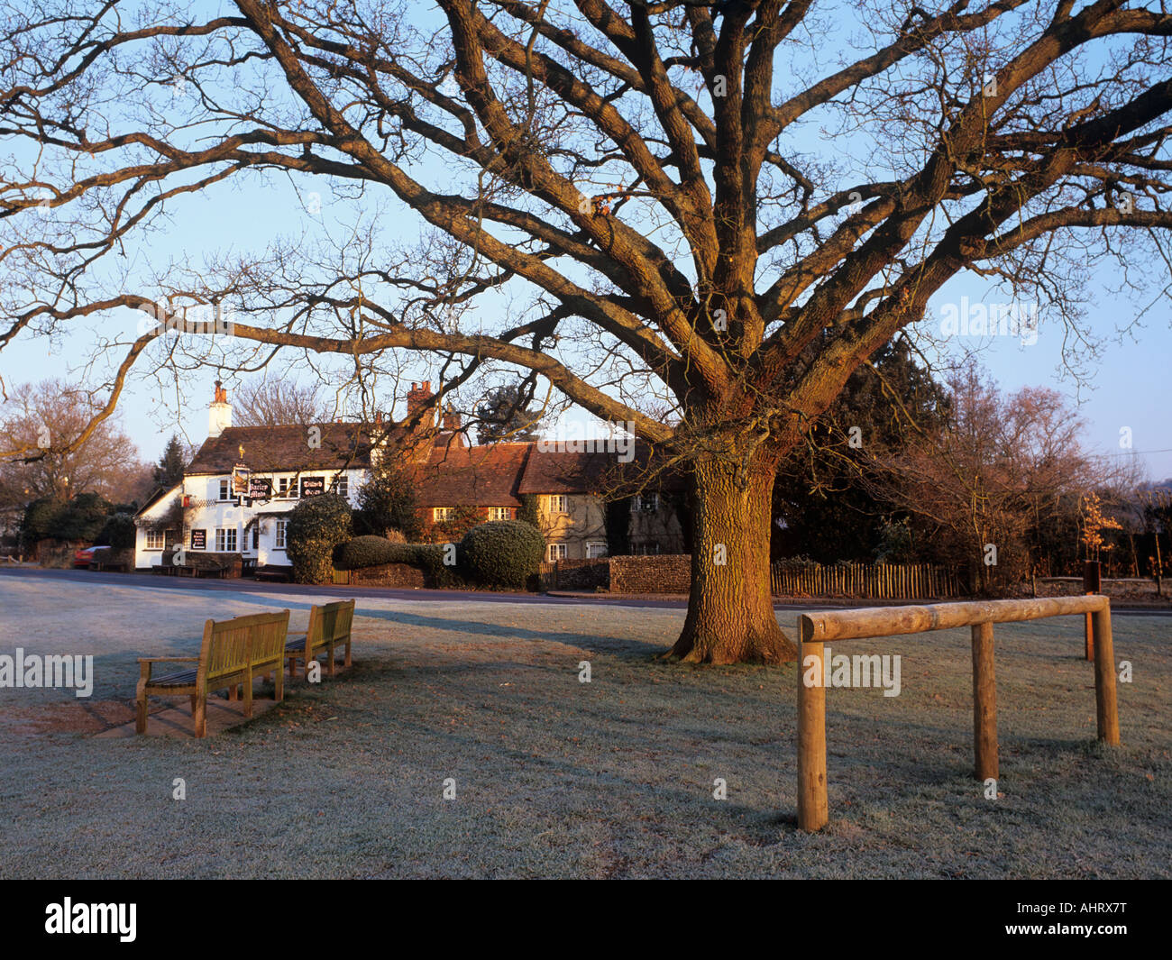 Pub overlooking village green with winter frost and tree in picturesque Tilford village Surrey England UK - Stock Image