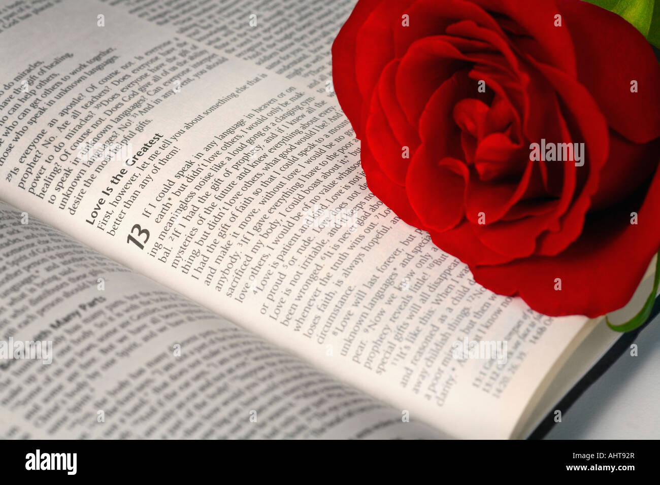 Wedding Rings Clip Art Free Download Red rose on open Bible...