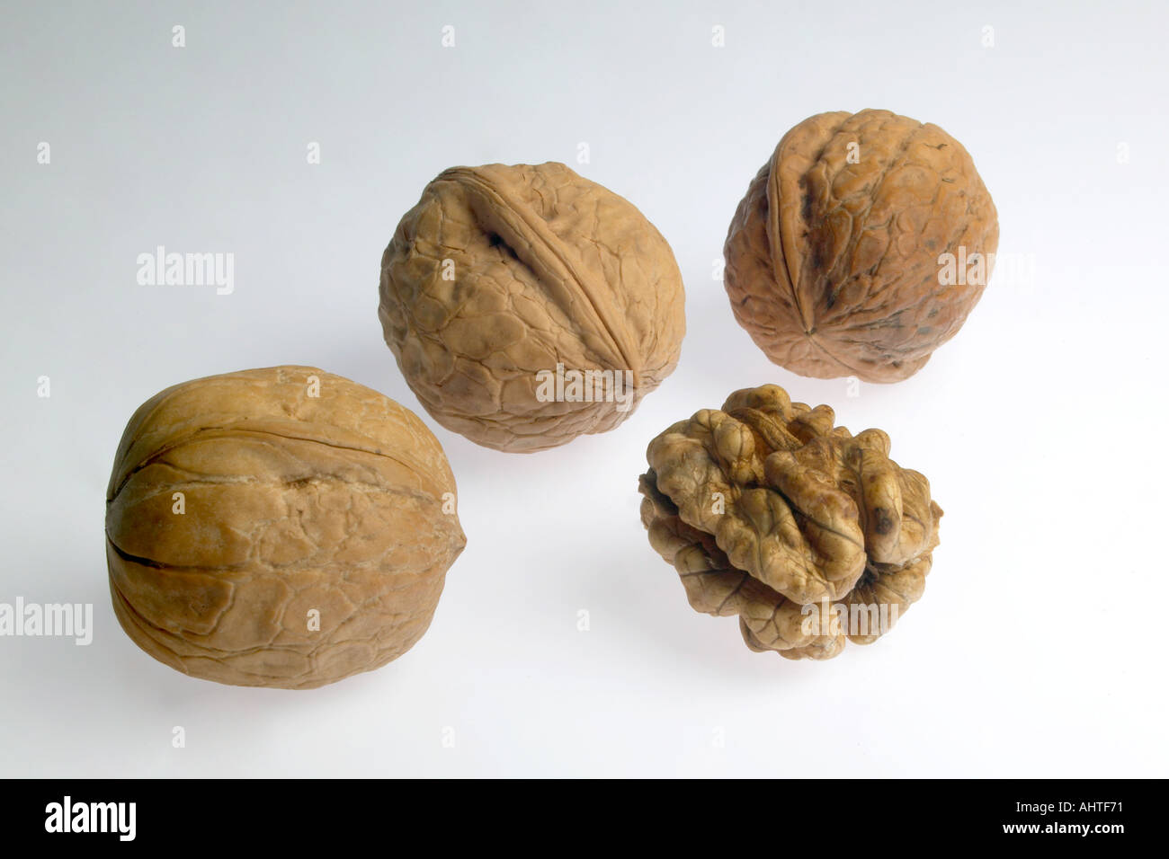 AAD91587 4 Four pieces of dry fruit walnut three in shell one open nut snack food - Stock Image