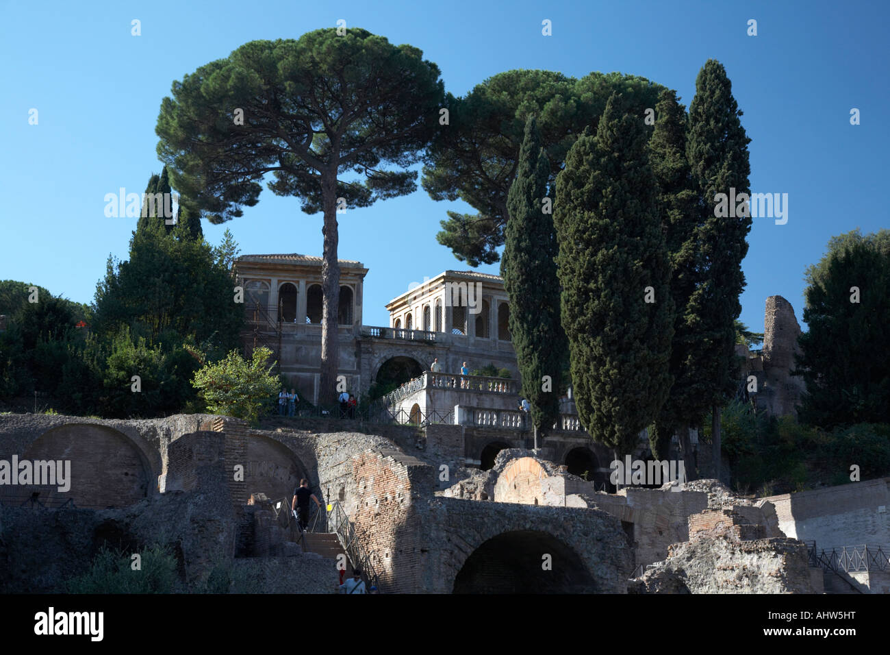 The Palatine hill and flavian palace as viewed from the Imperial Roman Forum Rome Lazio Italy - Stock Image