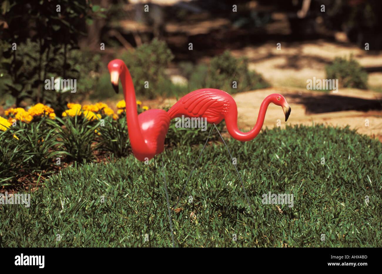 San Antonio Texas USA Botanical Garden Pink Plastic Flamingo ...