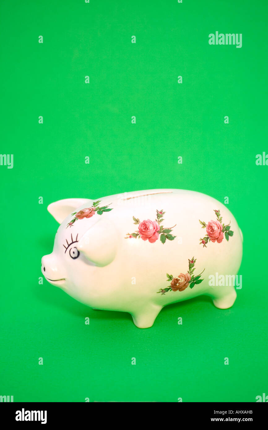 Piggy Bank With Pink Rose Decoration Stock Photo 8320410 Alamy