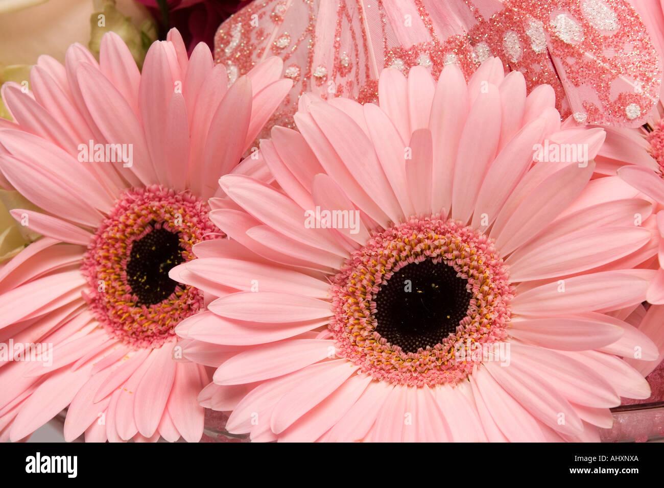 weddings arrangement bunch of pink gerbera flowers Stock Photo ...