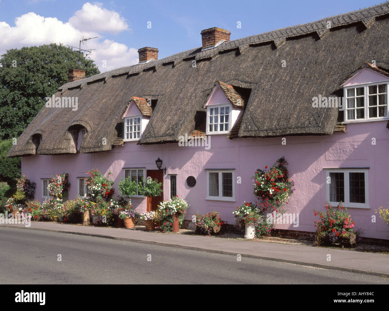 Pleshey thatched roof cottages with dormer windows and rendered colour washed walls (no front garden) - Stock Image
