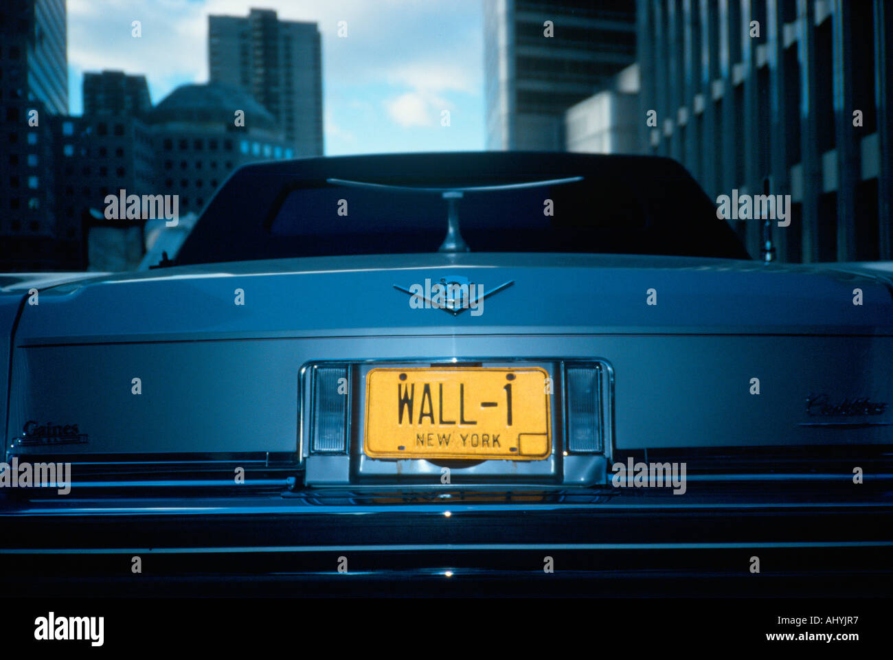 Vanity License Plate New York - Stock Image