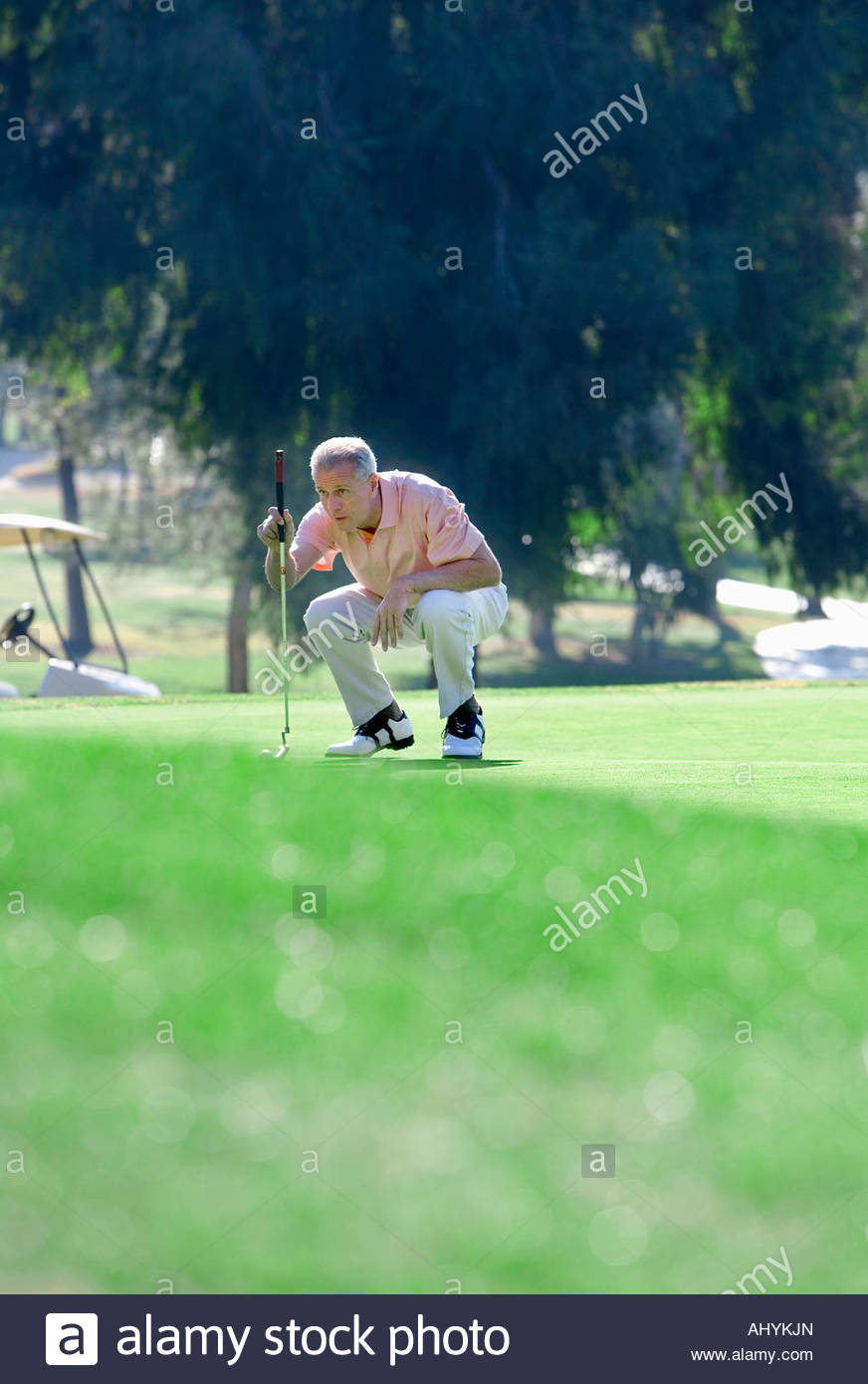Mature man lining up putting shot on green in mid-distance, holding putter, crouching, focus on background - Stock Image