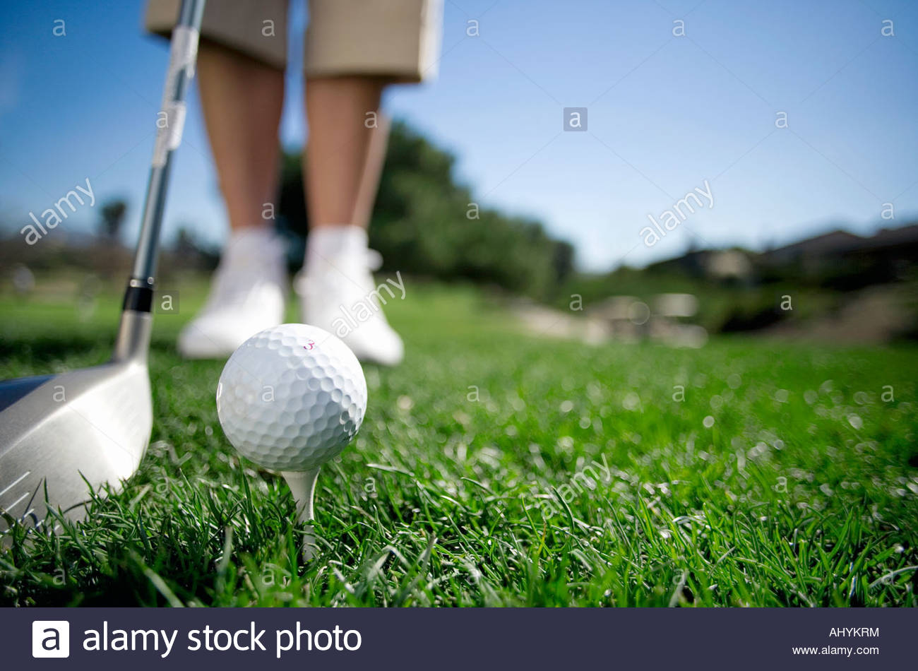 Mature woman preparing to tee off with driver on golf course, close-up, low section, focus on golf ball in foreground - Stock Image