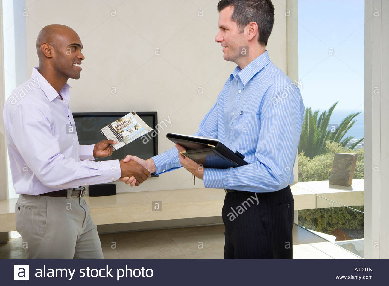Man and male real estate agent shaking hands in living ...