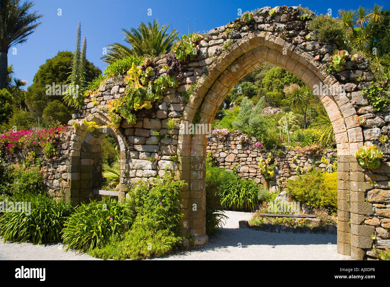 Tresco Abbey Sub Tropical Gardens in summer sunshine Tresco Isles of ...