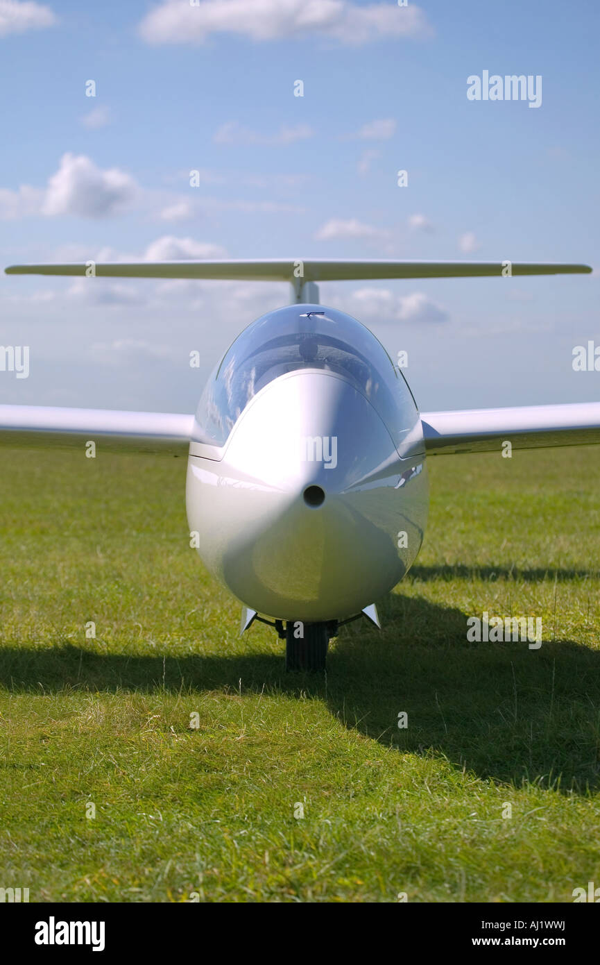 Portrait of a white glider on grass - Stock Image