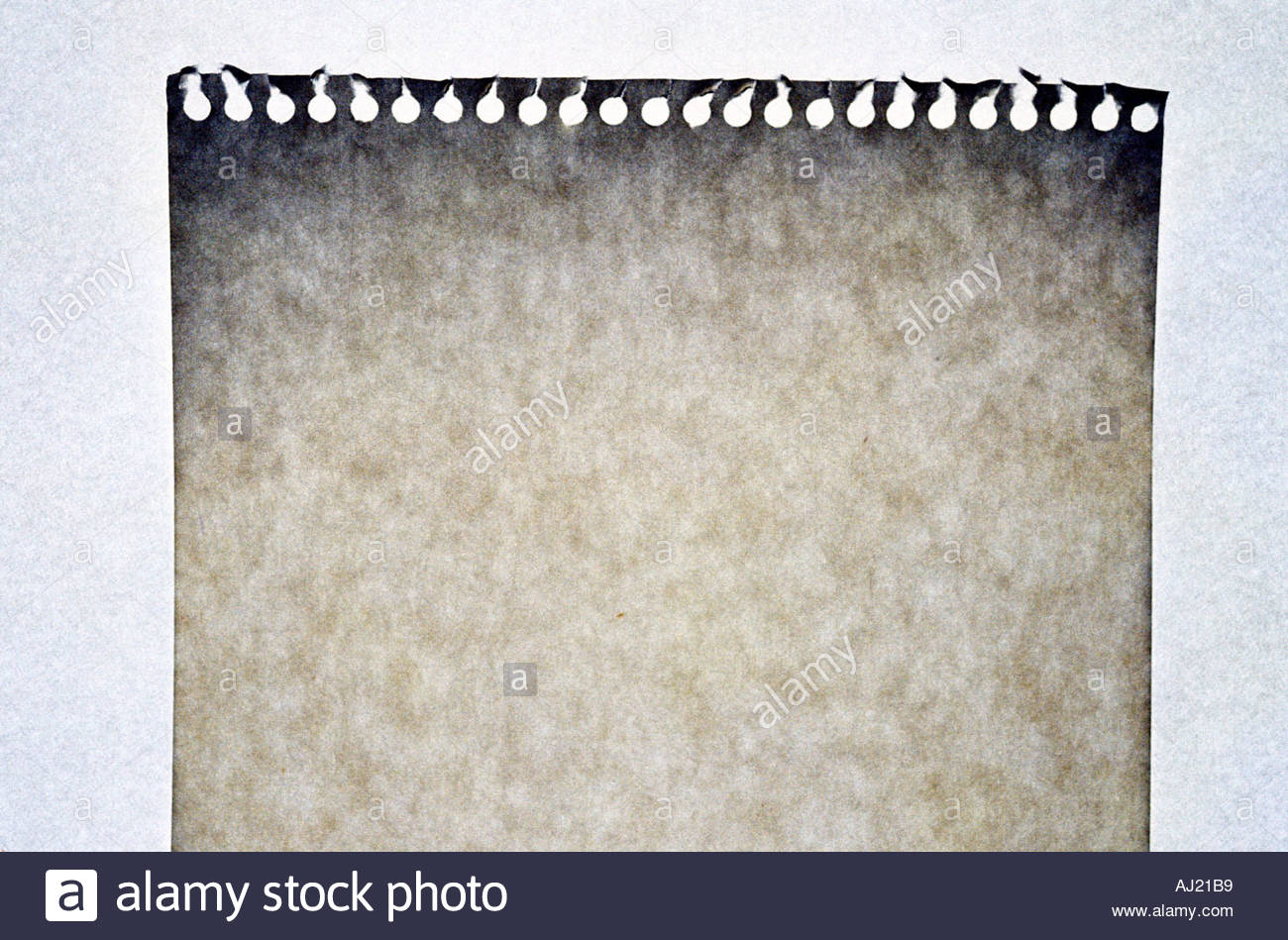 torn page from a notepad - Stock Image