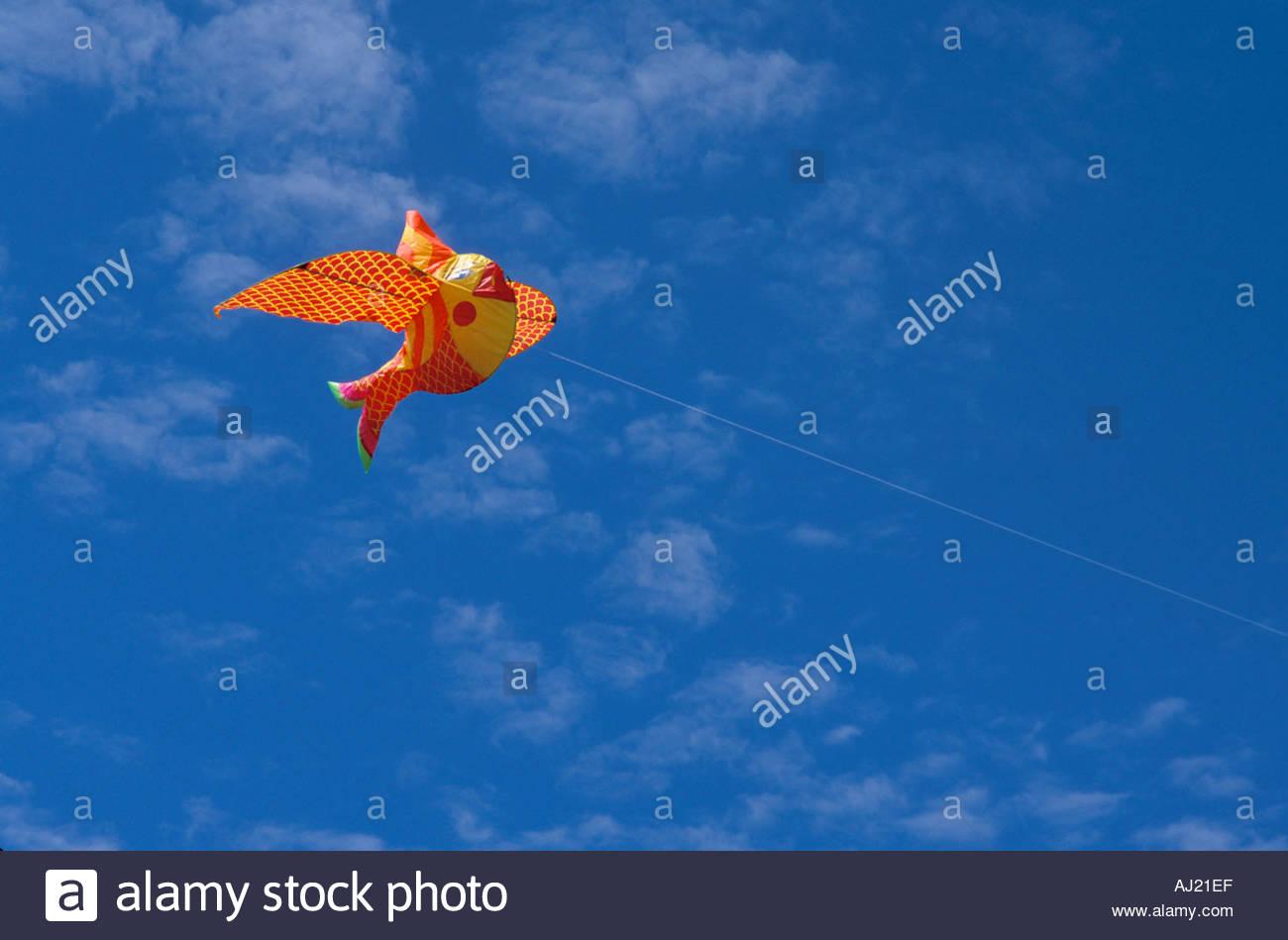 funny fish kite in the sky - Stock Image