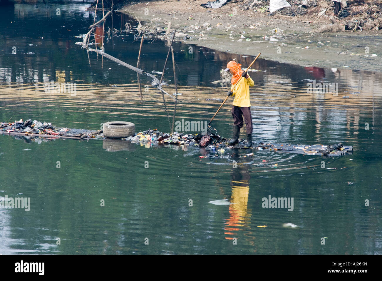 Young Man Picking through Ciliwung River of Garbage for Scraps of Value Jakarta Indonesia - Stock Image