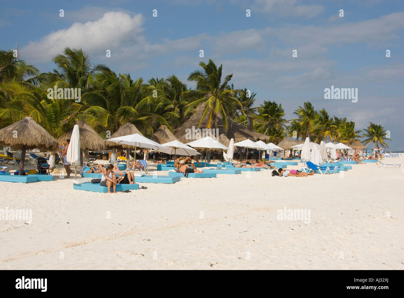 Palm Trees and Thatched Roof Cabana Huts of the Beach Bar ...