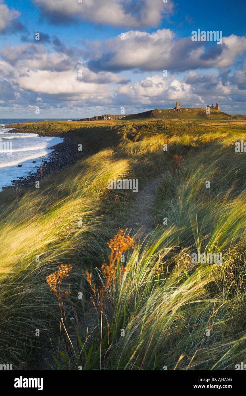 Blustery afternoon on the Northumberland coast at Dunstanburgh - Stock Image