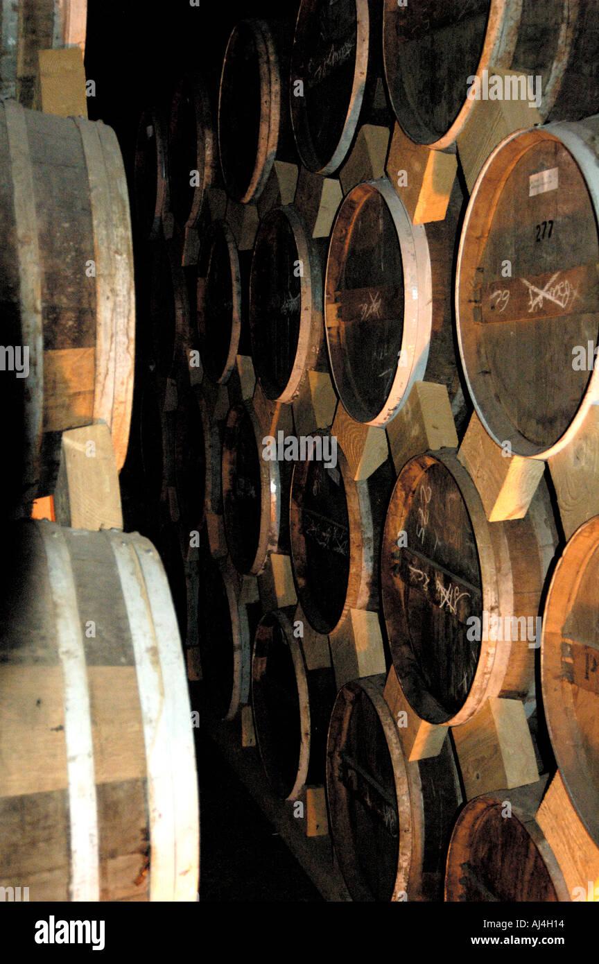 cognac barrels Stock Photo