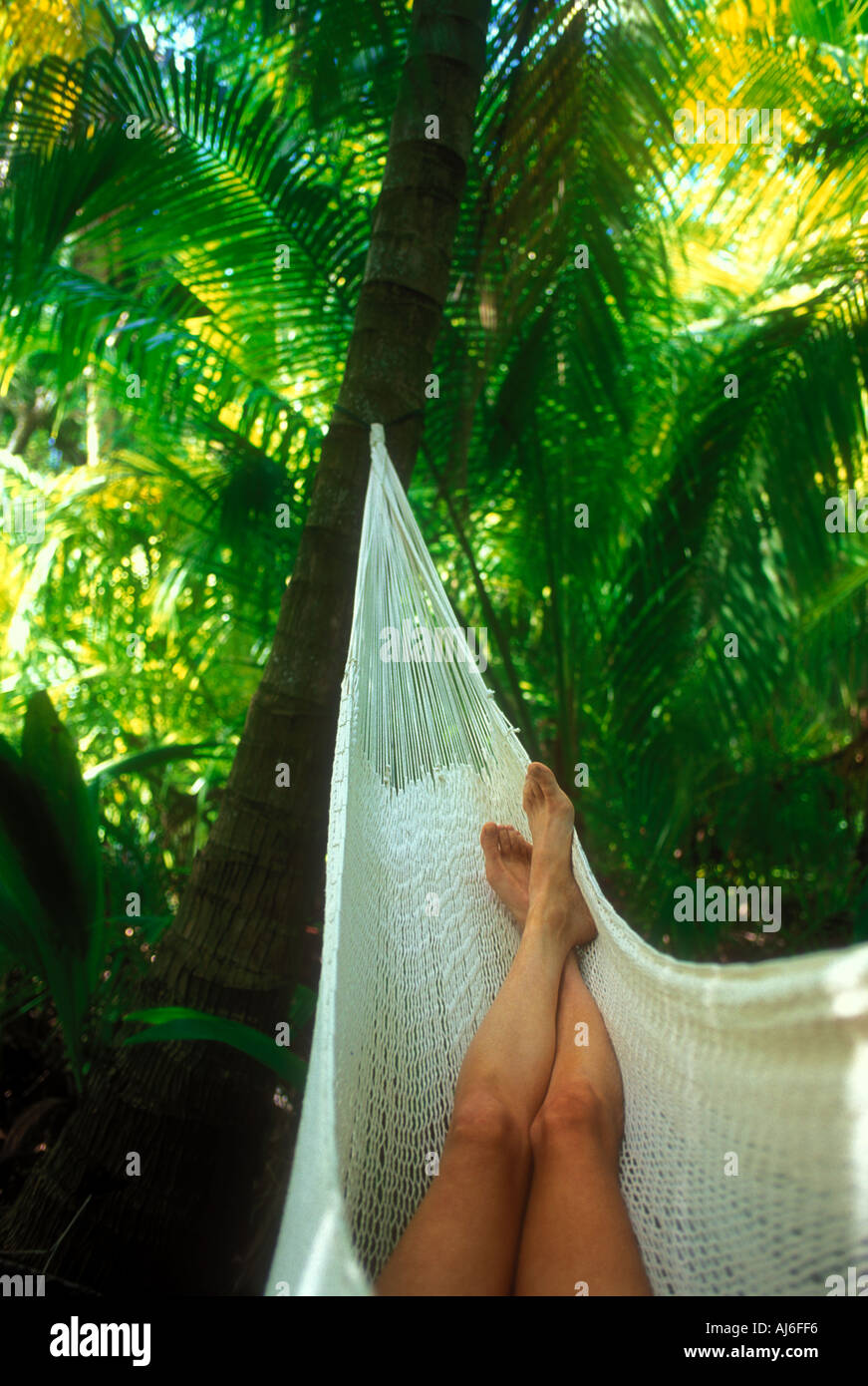 Womans legs in hammock surrounded by green tropical foliage in Belize Caribbean Model and Property Released Image Stock Photo