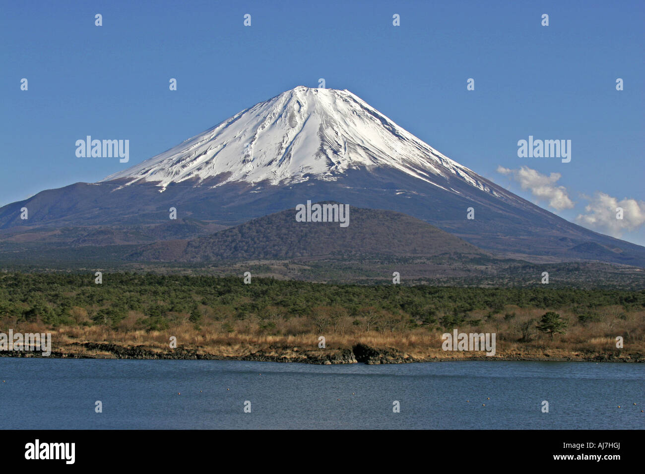 Mount Fuji view from Lake Shouji - Stock Image