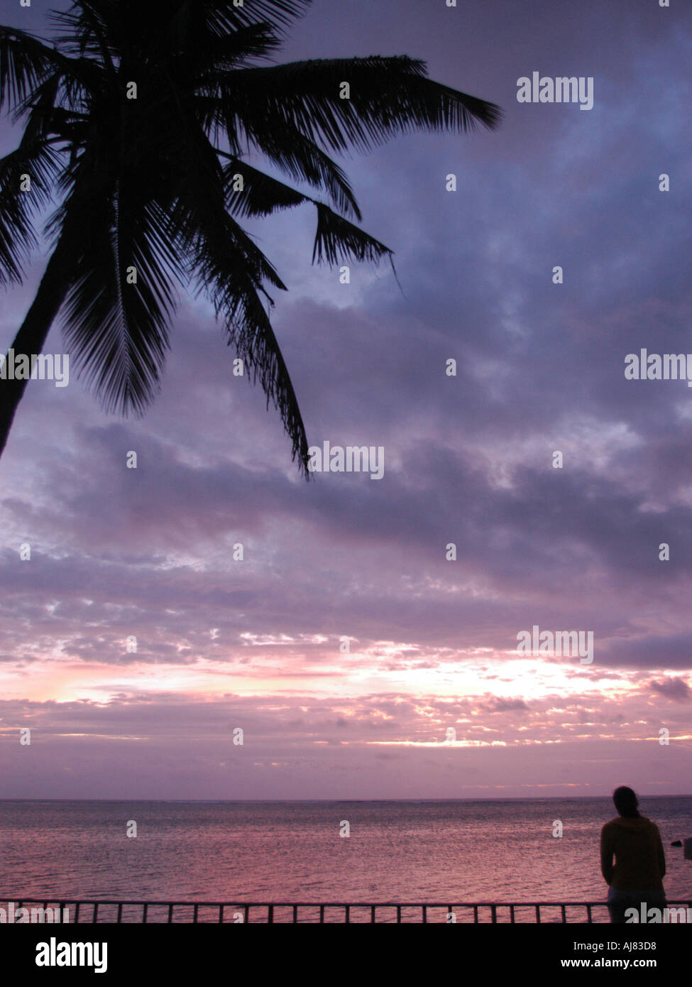 tropical sunset, Mauritius, Indian Ocean - Stock Image