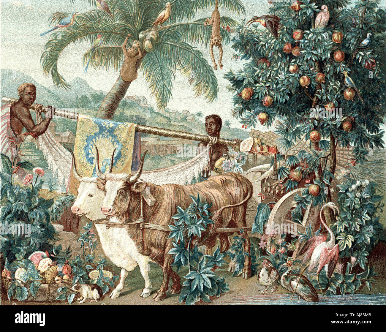Wealth of the Indies 17th century  - Stock Image