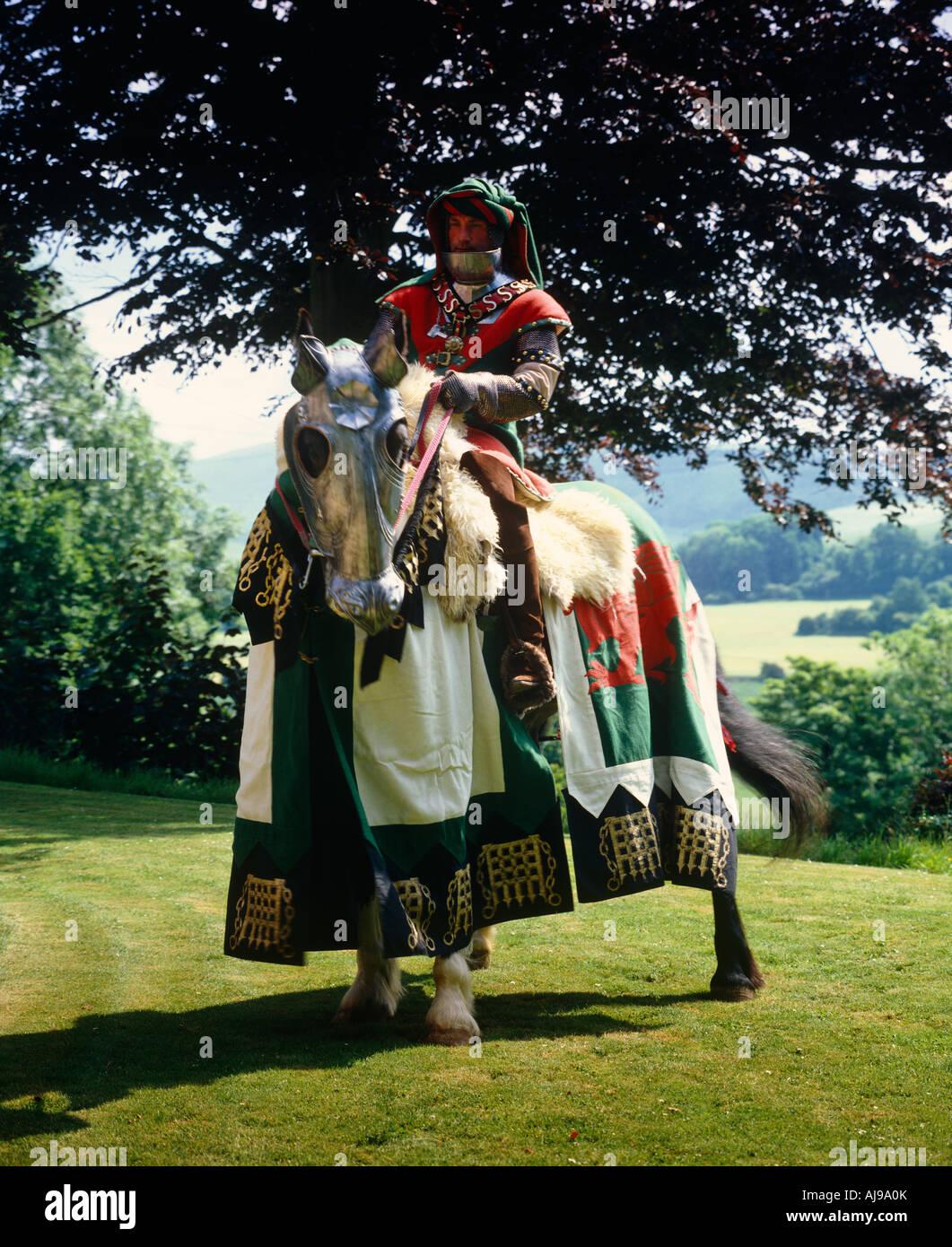 Battle Of Bosworth - Henry Tudor - Stock Image