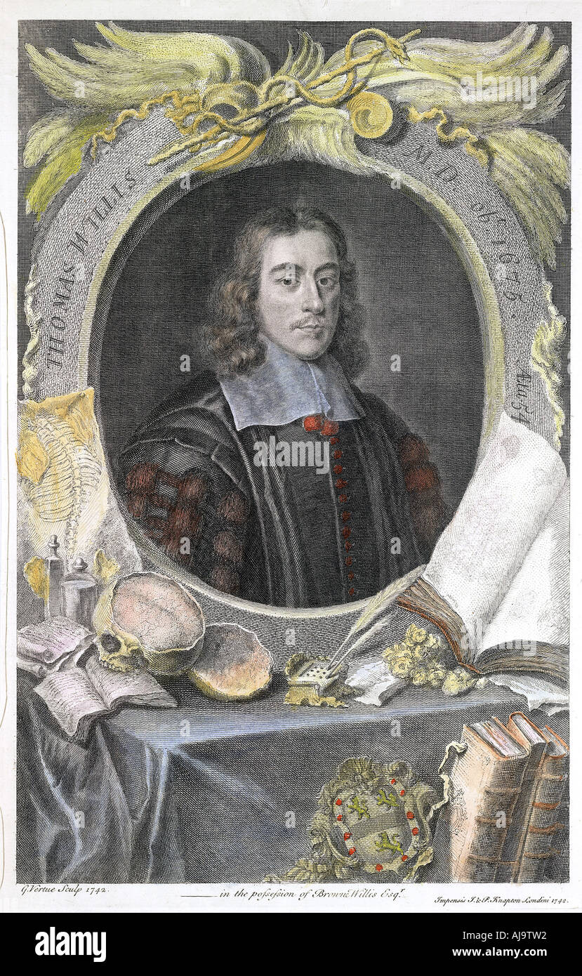 Thomas Willis 17th century English physician 1742